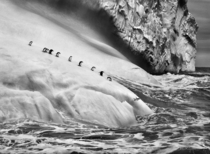 Stunning Antarctic ice shelf Penguins queuing to dive off Sebastio Salgado