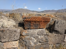 Stunning orange lichen on this stone carving from a ruined fifth century Armenian mausoleum