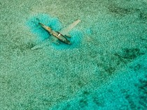 Submerged plane in the Bahamas
