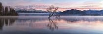 Subzero Serenity Lake Wanaka NZ  Photo by Karl Strand xpost from rNZPhotos