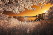 Suffolk Orwell Bridge in Infrared  photo by Parrish Colman xpost rinfraredporn