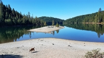 Sugar Pine Reservoir in the Sierra foothills California OCx
