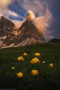 Summer evenings in the Dolomites Italy  IG marcograssiphotography
