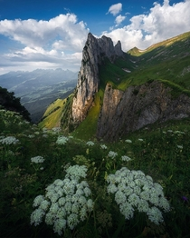 Summer in the Swiss alps  by marcograssiphotography