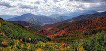 Summer Meets Fall in American Fork Canyon Utah