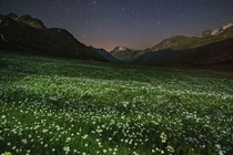 Summer night falls over an alpine meadow stippled with wildflowers in Italys Gran Paradiso National Park In a busy country Gran Paradisos unspoiled landscape is an arcadian oasis  Photo by Stefano Unterthiner