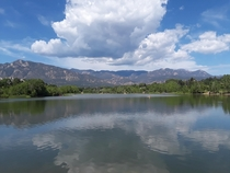Summertime at Quail Lake Colorado Springs CO  x