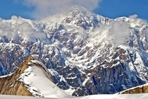 Summit of Denali not McKinley pictured from the Root Glacier in Denali National Park x