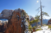 Summiting a snowcapped Angels Landing in Zion National Park UT