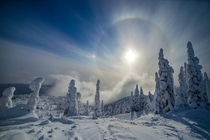 Sun dog and snow in Whitefish Montana