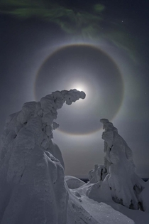 Sun Halo Snow Covered Trees The Aurora Iceland Photo by Pekka Isomursu