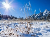 Sun over fresh snow Chautauqua Open Space Boulder Colorado