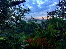 Sun rising over the Amazon rainforest - Tiputini Biodiversity Station Ecuador