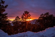 Sun setting during a snow storm on Mt Lemmon AZ