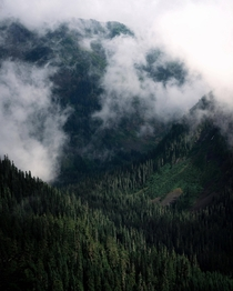 Sun shining through the clouds in Snoqualmie National Forest WA
