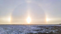 Sundogs North Dakota Sundogs form on particularly cold winter days when the water vapour in the atmosphere crystallizes rather than forming clouds