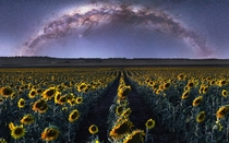 Sunflower and Milky Way composite from SE Queensland Australia