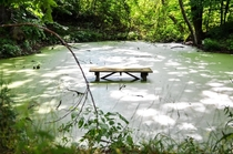 Sunken picnic table in Lake Lemon Indiana