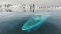 Sunken Ship in Antarctica