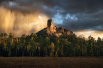 Sunlight hits an oncoming rainstorm above the aspens Fall color in SW Colorado is a sight that you have to see to believe