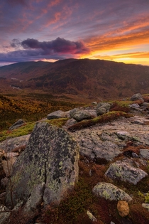 Sunrise above treeline in the Presidential Mountains of NH These slopes will be covered in snow and ice soon