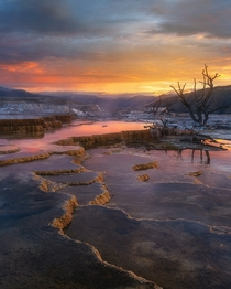 Sunrise at Mammoth Hot Springs Yellowstone National Park