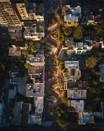 Sunrise at that one curvy street in San Francisco CA