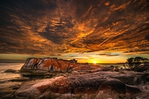 Sunrise at the Bay of Fires Tasmania