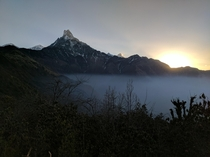 Sunrise behind Machapuchare from my campsite on the Mardi Himal Trek Nepal x