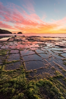 Sunrise from the Tessellated Pavement Eagle Hawk Neck Tasmania Australia by Michael Blyde