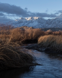 Sunrise in Bishop California  IGzachgibbonsphotography