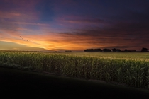 Sunrise in Iowa Corrected with png download available