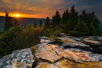 Sunrise in one of our newly protected Wilderness areas in the Allegheny Mountains United States