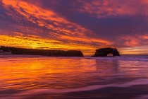 sunrise in the Bay Area yesterday was insane - Natural Bridges State Beach CA