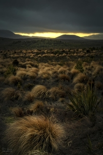 Sunrise in the Tongariro National Park New Zealand
