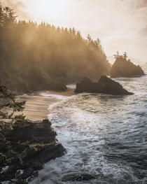 Sunrise melting away coastal fog Brookings OR  IG kylefredrickson