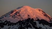 Sunrise on Mount Rainier from Chinook Pass WA