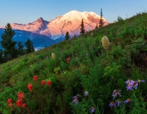 Sunrise on Mt Rainier Washington  by John Richter x-post rUnitedStatesofAmerica