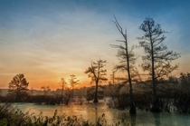 Sunrise over Cypress marsh - Mingo NWR Missouri OC