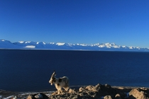 Sunrise over Lake Nam Co Tibet with Nyenchen Tanglha Mountains in the background