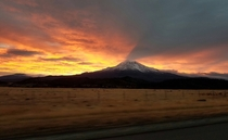 Sunrise over Mt Shasta Mt Shasta California