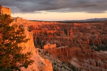 Sunrise over the Hoodoos of Bryce Canyon NP