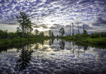 Sunrise over the Suwannee Canal in the Okefenokee National Wildlife Refuge