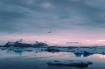 Sunset at Jokulsarlon Glacial Lake in Iceland OP x