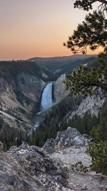 Sunset at Lower falls Yellowstone National park