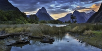 Sunset at Milford Sound Fiordland National Park New Zealand  photo by Molly Brown