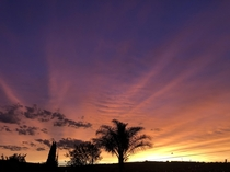 Sunset from my backyard Centurion South Africa