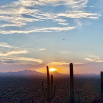 Sunset in Tucson Arizona