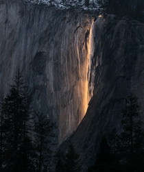 Sunset light makes water at Horsetail Falls look like fire California USA