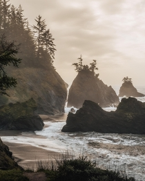 Sunset mist along the Southern Oregon Coast Brookings OR  IG kylefredrickson